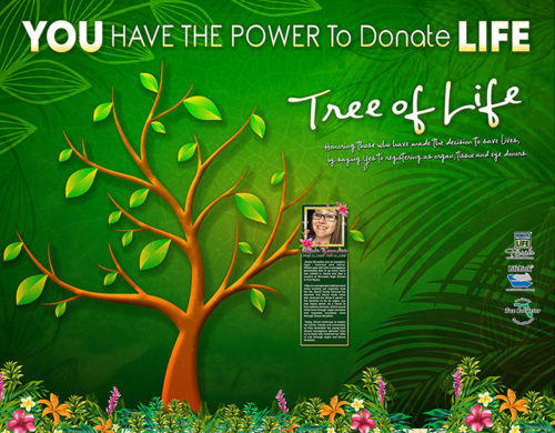 Lifelink Bonita Springs Wall Image For Website SMALL